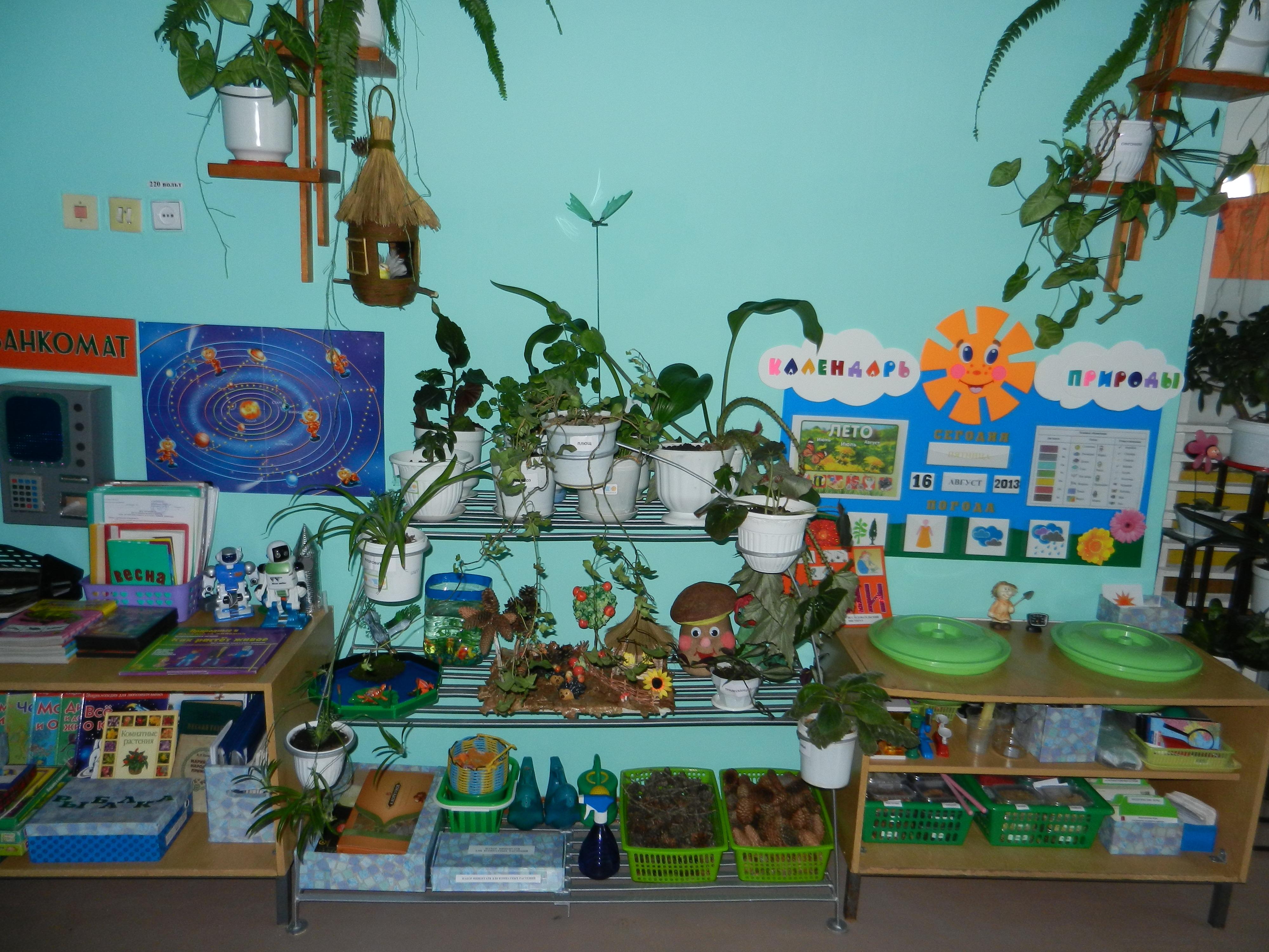 Оформление природных уголков в детском саду своими руками фото