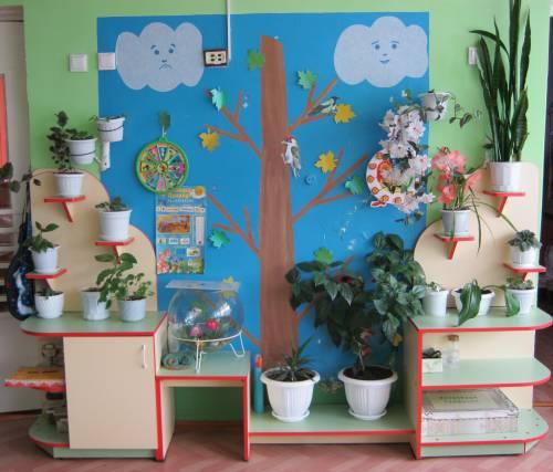 Уголки в детском саду своими руками уголки природы 61